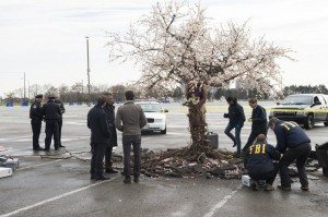 A group of people are shown looking at an uprooted tree in a parking lot with a dead body interweaved into the tree itself.