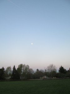 The moon appears low in the sky over a park with a green field.