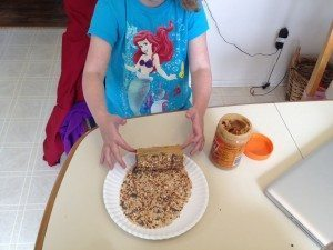 Little girl carefully rolling the peanut butter-covered roll in a plate of birdseed.