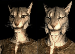 Khajiit, cat-people from Skyrim