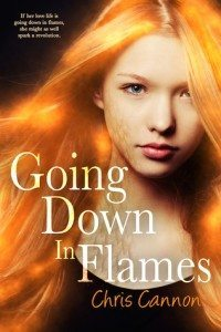 Cover of Going Down in Flames by Chris Cannon
