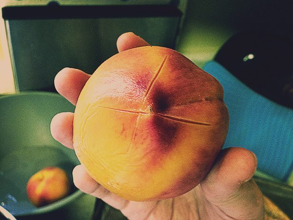 Slightly boiled peach, ready to be peeled