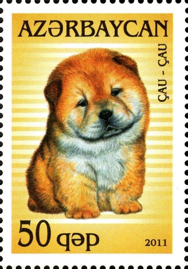 50 kopek stamp from Azerbaijan, which has a picture of a baby Chow Chow.