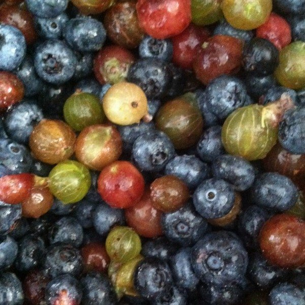 A close-up of mixed berries.