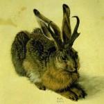Profile picture of Jackalopette