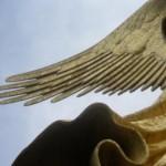 Profile picture of inessita